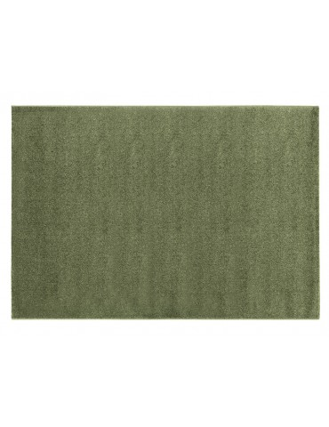 Pianta del tappeto colore verde a tinta unita